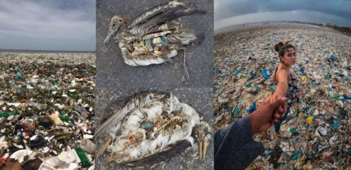 Plastic world 2018